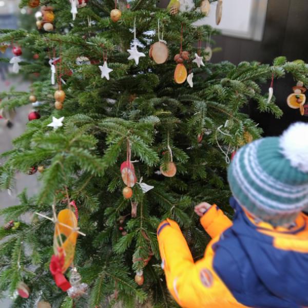Weihnachtsbaum mit selbstgebasteltem Weihnachtsschmuck der Vorschulkinder